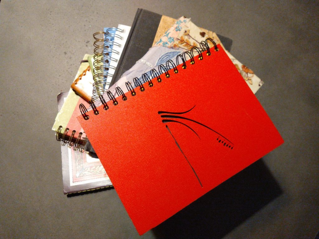 How to use writer's notebooks with students